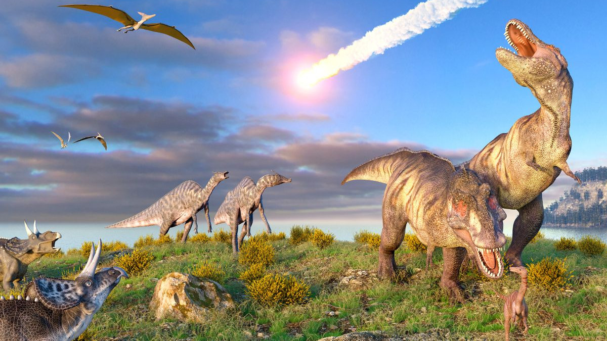 Meteor kills Dinosaurs