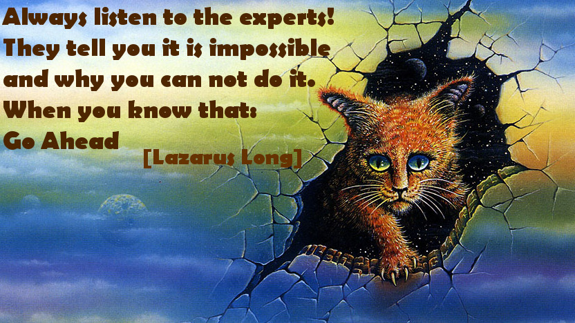 Always listen to the experts! They tell you it is impossible and why you can not do it. When you know that: Go Ahead! [Lazarus Long]
