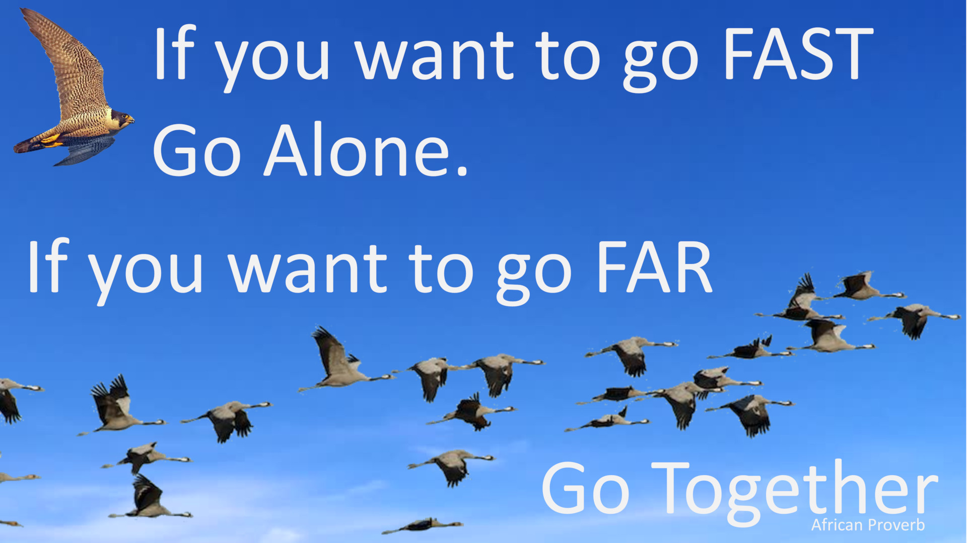 If you want to go Fast, go Alone. If you want to go Far, go Together